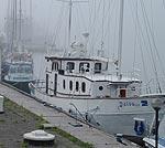 Kuģu satiksmi apgrūtina bieza migla