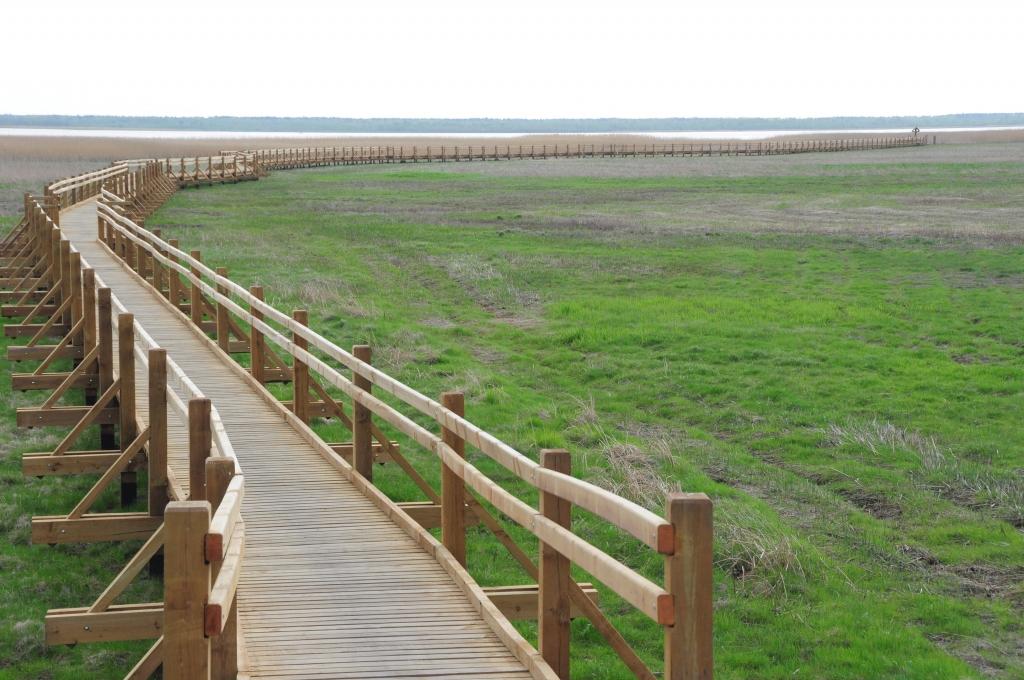 Putnu vērošanas torni uzstādīs jūlija sākumā