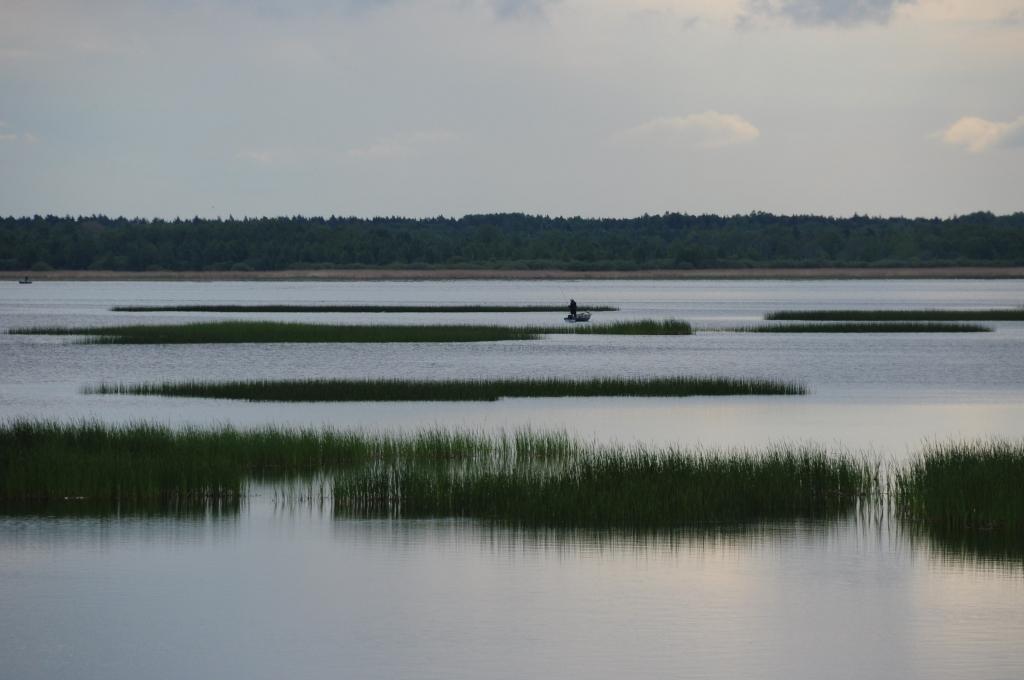 Par Latvijas Vides aizsardzības fonda piešķirtajiem līdzekļiem ...