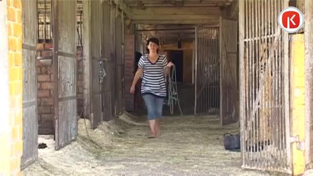 Vietējais zirgkopis tūristus pievilina ar senlaicīgu karieti