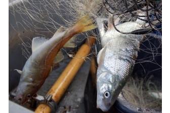 Liepājas ezerā pieķerti divi maluzvejnieki