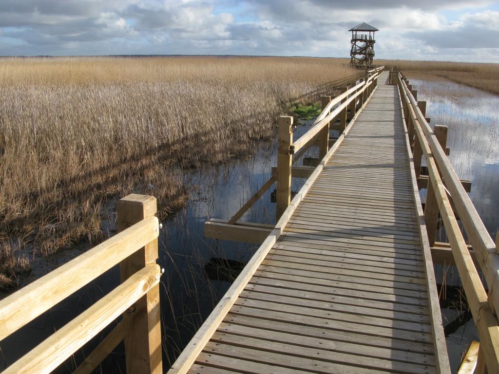 Izdemolēta jaunizbūvētā ezera laipa