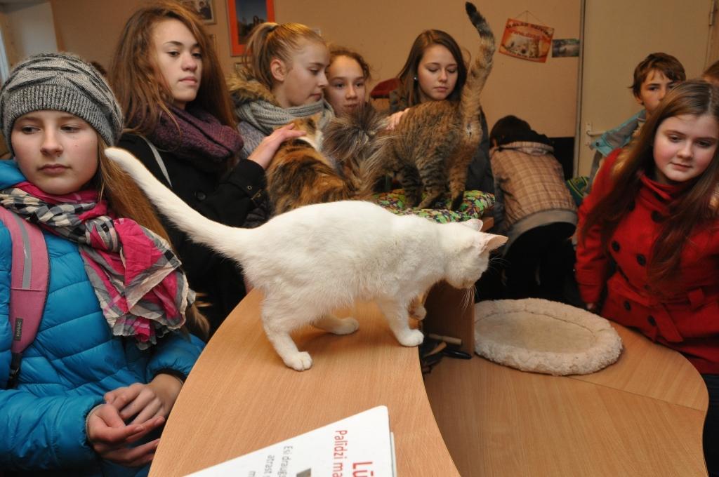 Atved klasesbiedrus uz Dzīvnieku patversmi