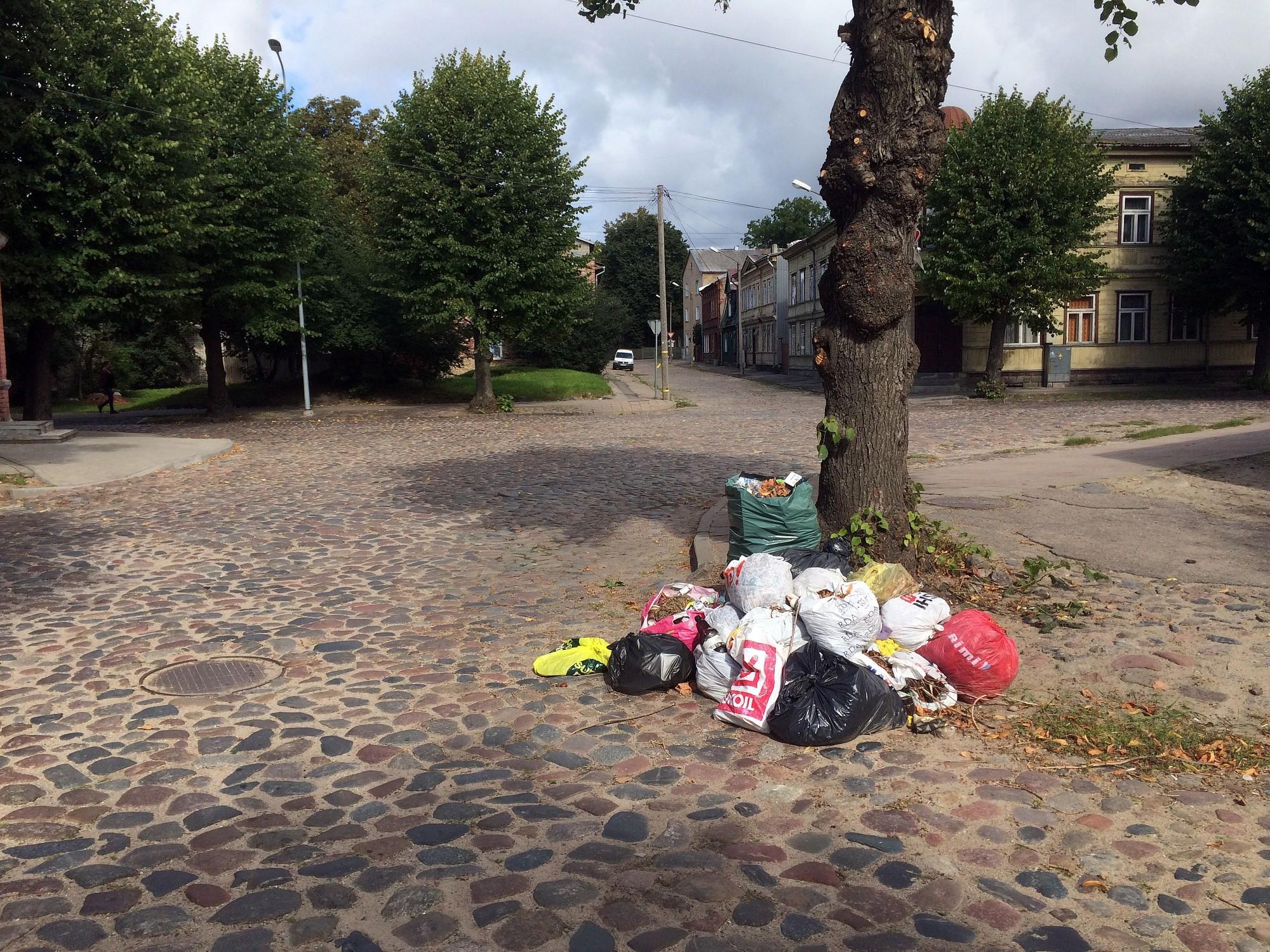Zaļos atkritumus jāizved zemesgabala īpašniekam, valdītājam vai daudzdzīvokļu mājas pārvaldniekam