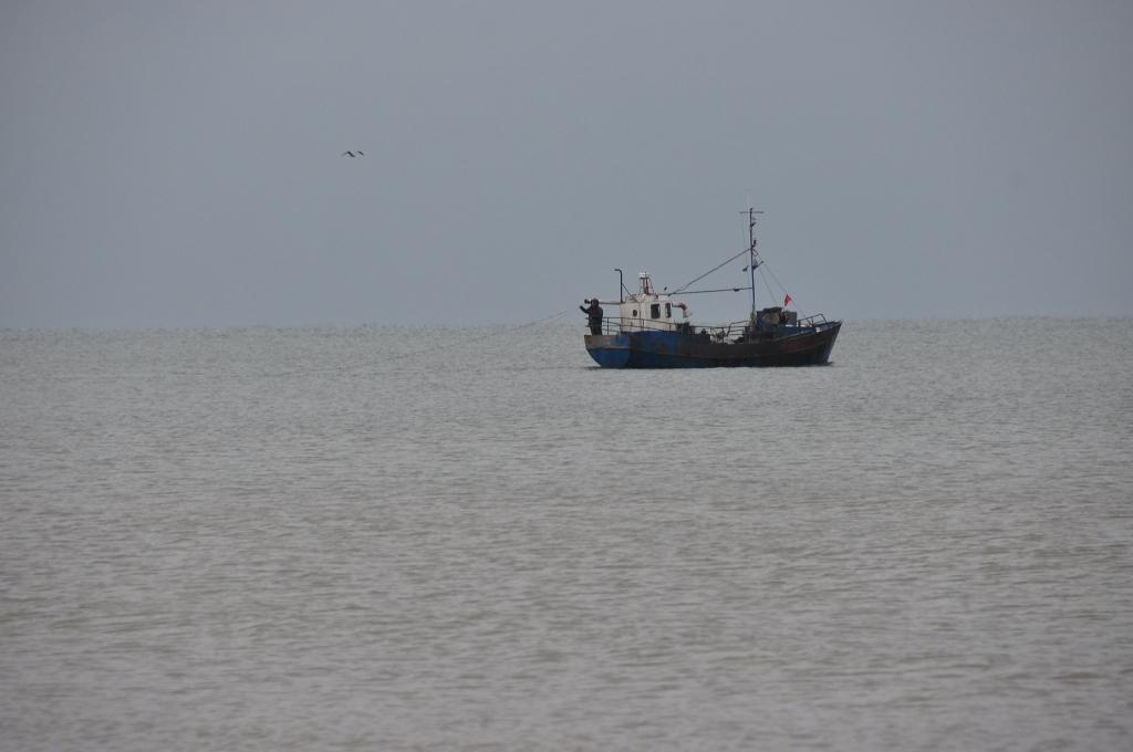 Daļēji atbalsta Rucavas, Saulkrastu, Dundagas un Liepājas pašvaldību priekšlikumus zvejas limitu maiņai