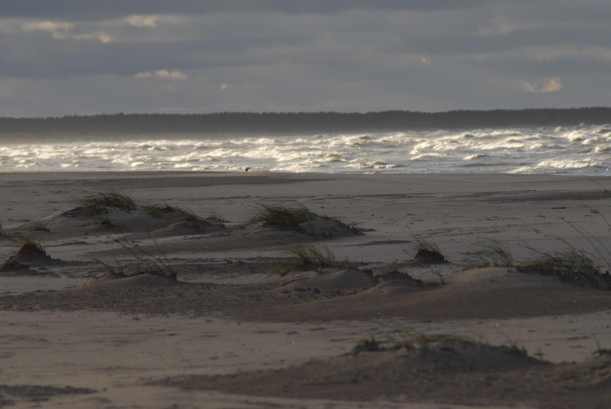 Nīcas novadā no jūras izcelts cilvēka līķis