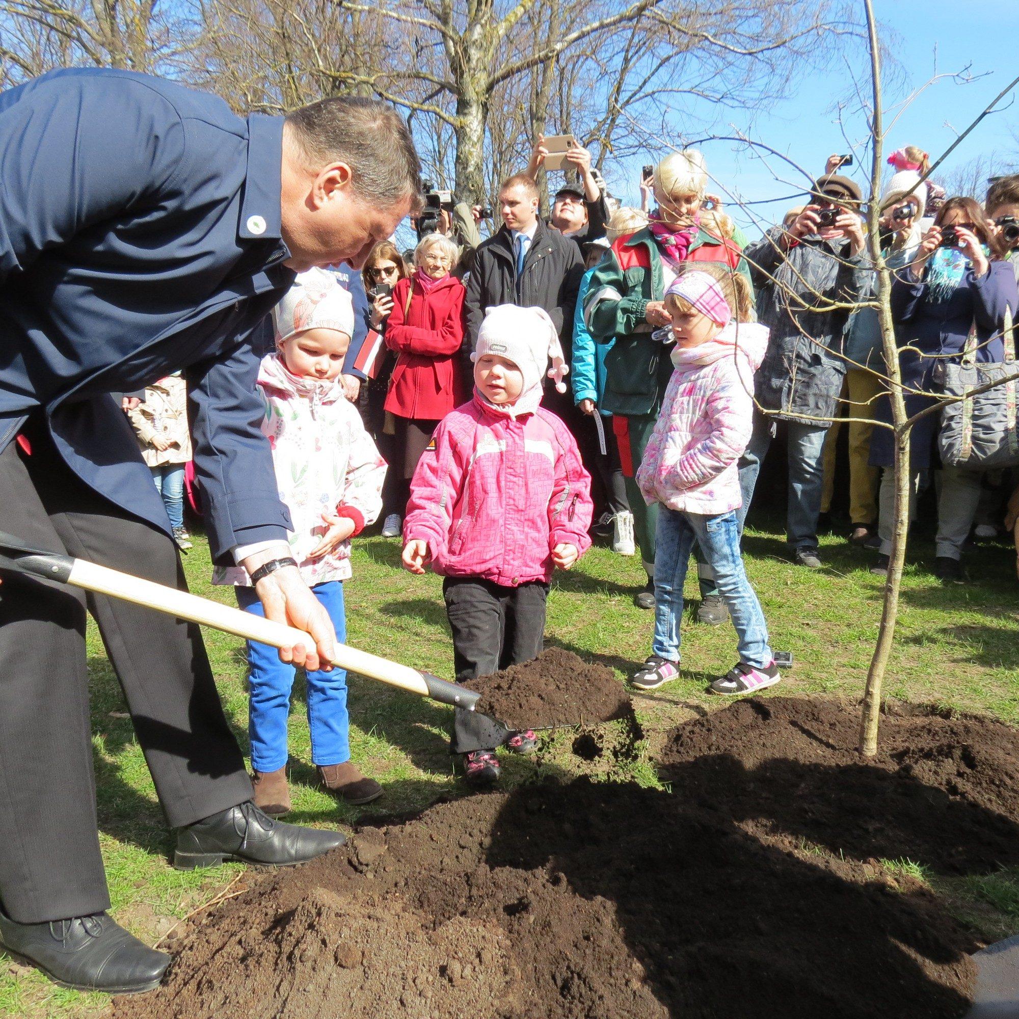 Valsts prezidents J.Čakstes laukumā iestāda Latvijas simtgades ozolu