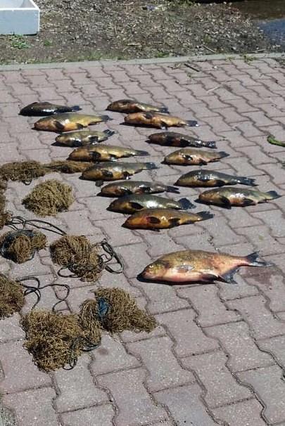 VVD inspektori Liepājas ezerā aiztur rūdītu malu zvejnieku