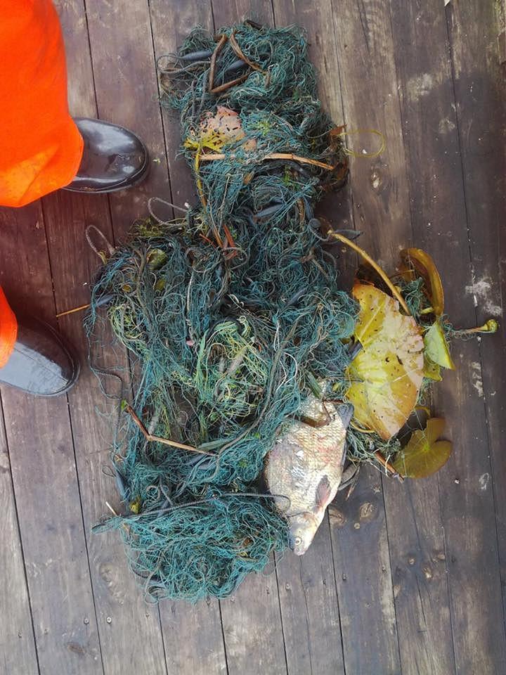 Maluzvejniekus grūti pieķert
