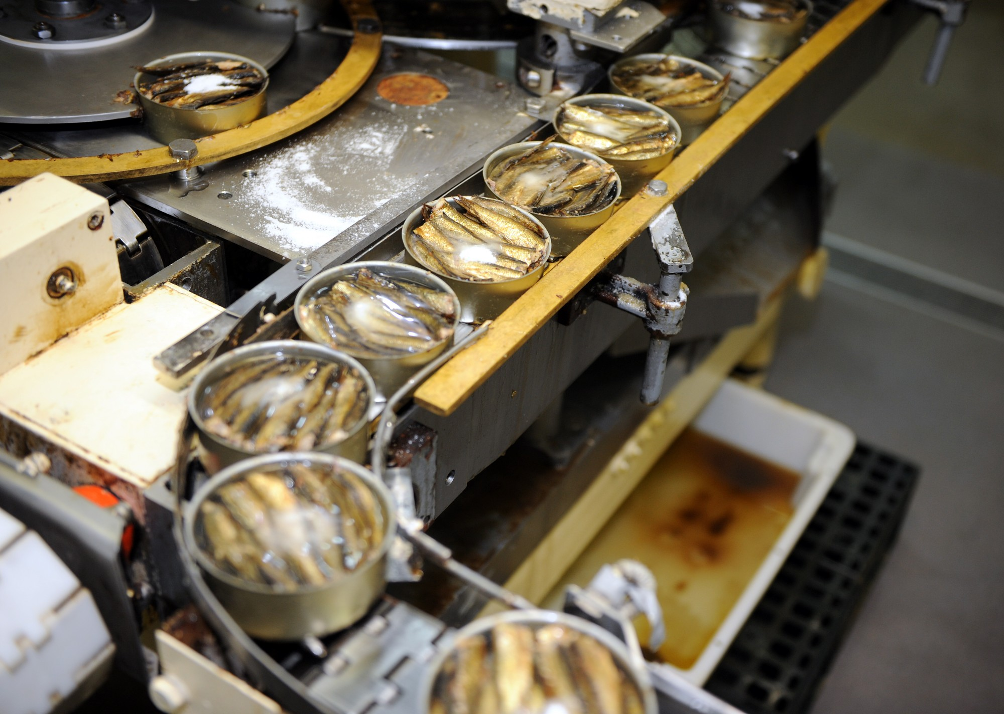 No zivju pārstrādātājiem piedzen vairāk par miljonu eiro