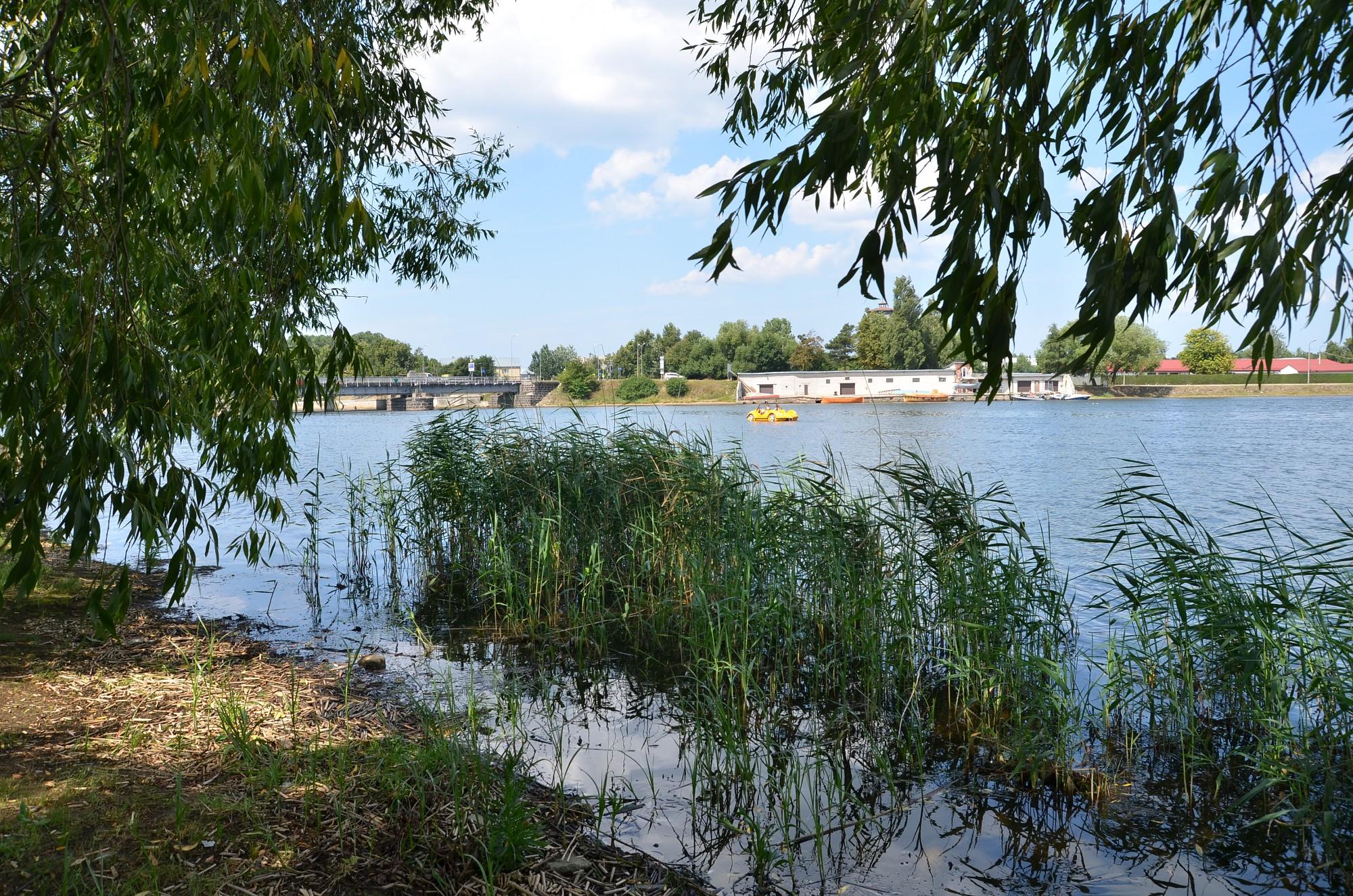 Liepājas ezerā uzsākti pļaušanas darbi