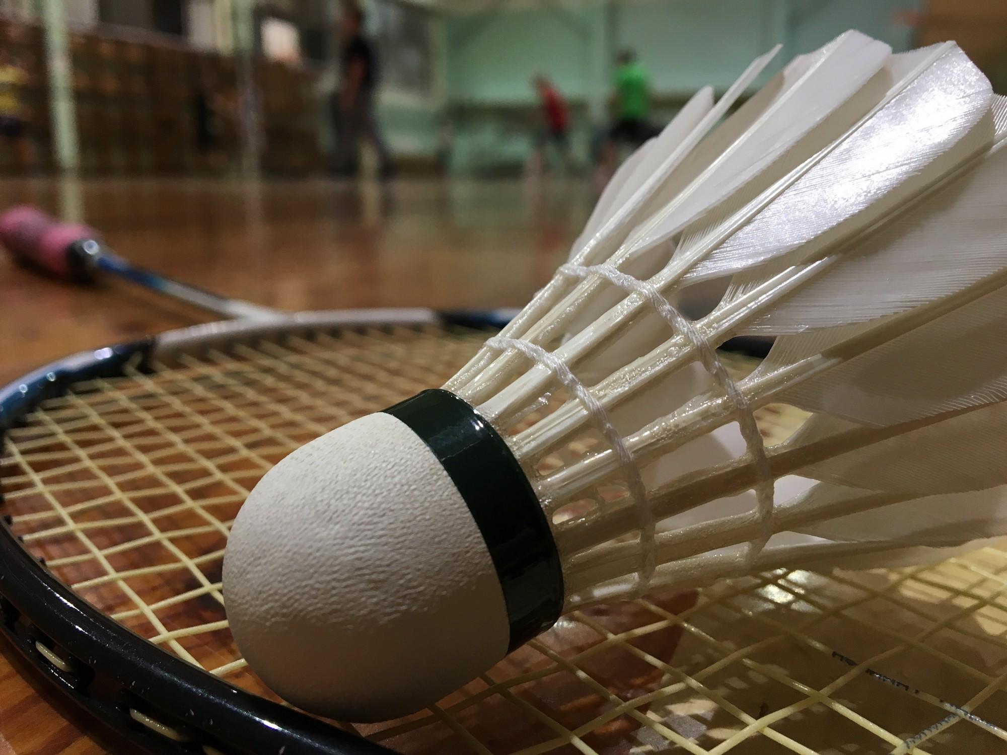 Medaļu birums badmintonistiem Talsos