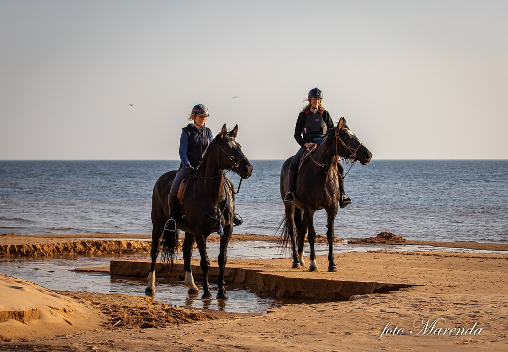 Zirgos apkārt Latvijai