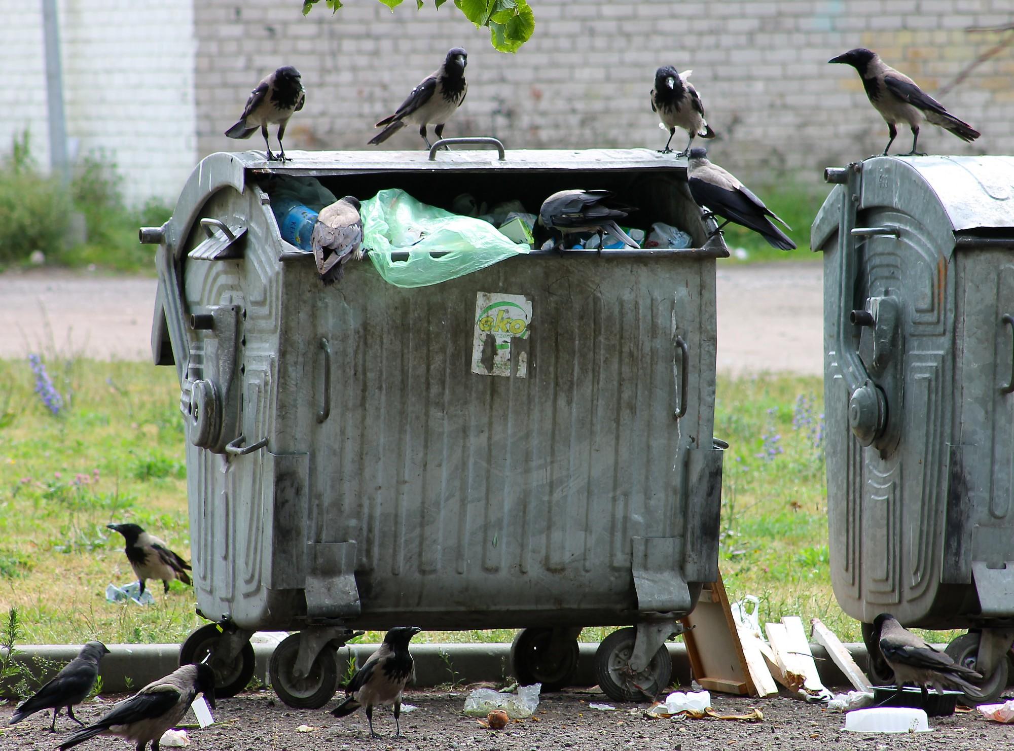 Atkritumos līdz acīm
