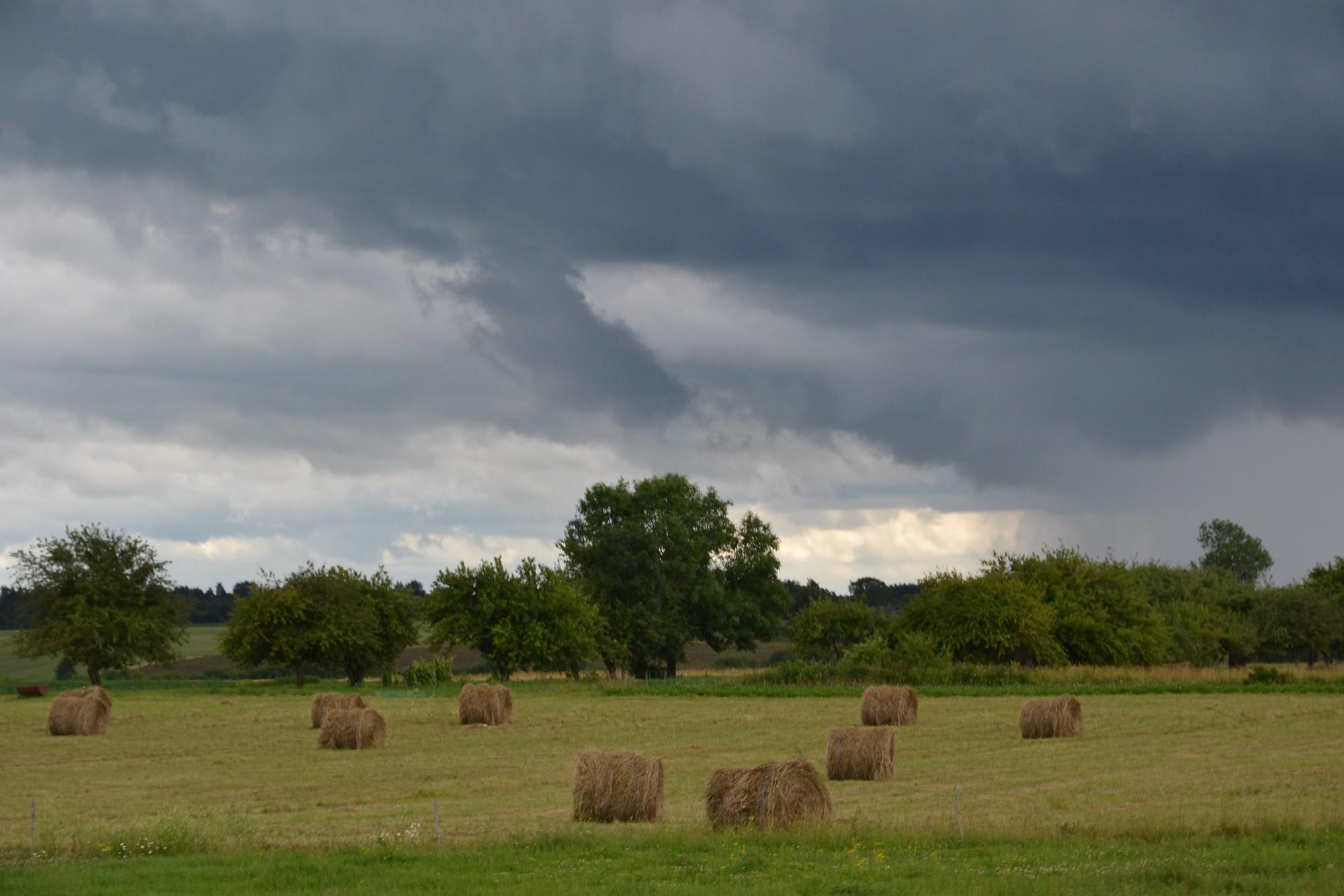 Neizsludinās ārkārtējo situāciju lauksaimniecībā