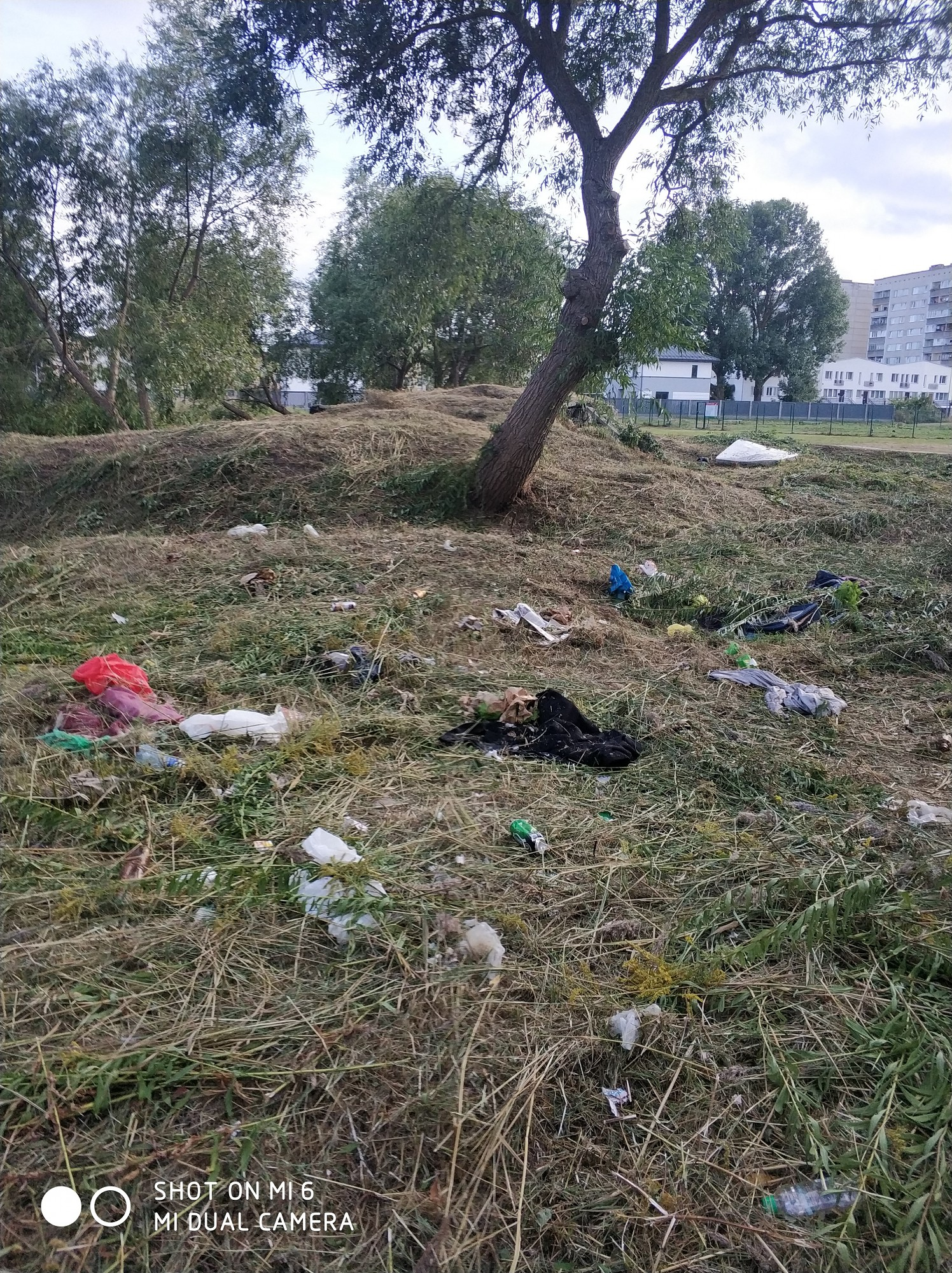 Katru gadu starp Vaiņodes un Airītes ielu skatam paveras atkritumu kaudzes