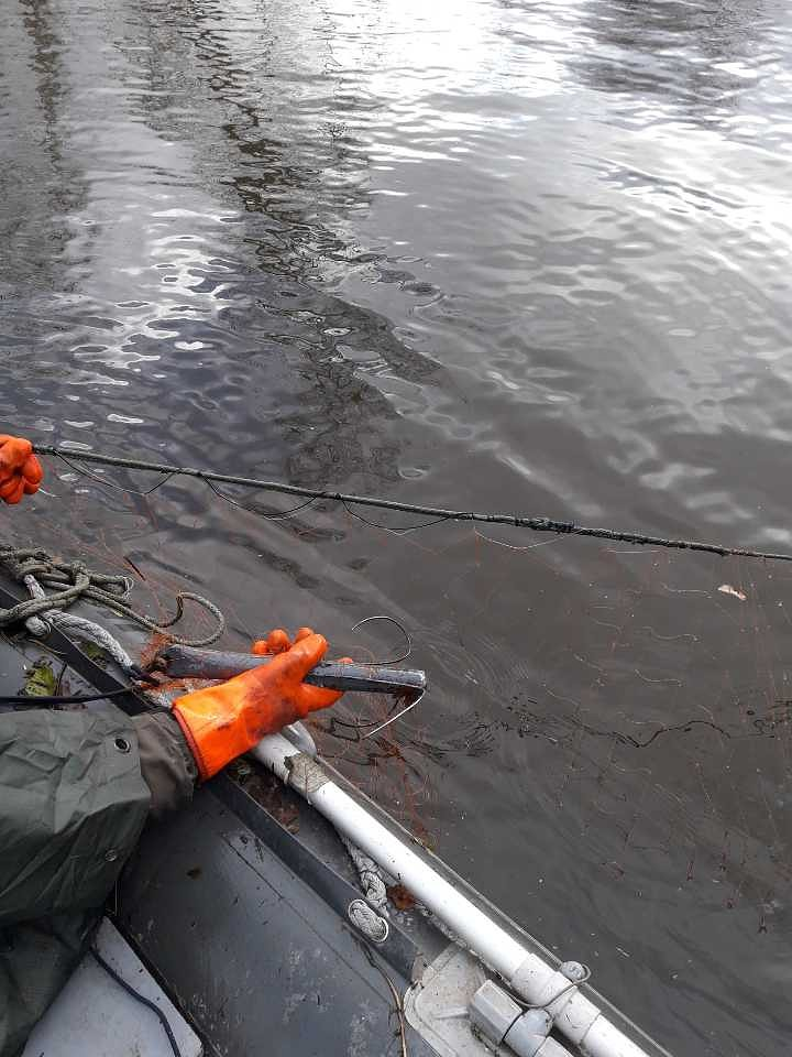 Zivju inspektori sākuši cīņu ar maluzvejniekiem