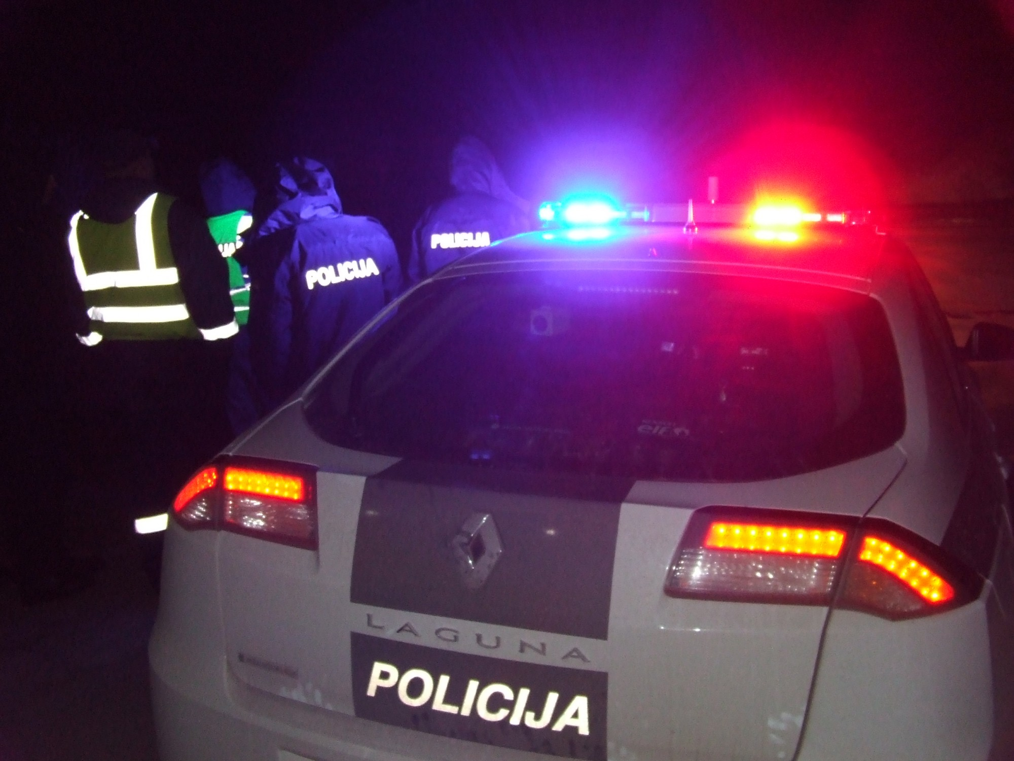 Nedēļas nogalē Kurzemē reģistrēti 14 negadījumi, kuros notriekti meža dzīvnieki