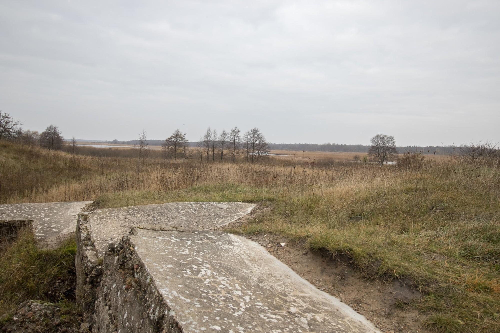 Šodien 100 gadi kopš Bermonta armijas sakāves pie Liepājas
