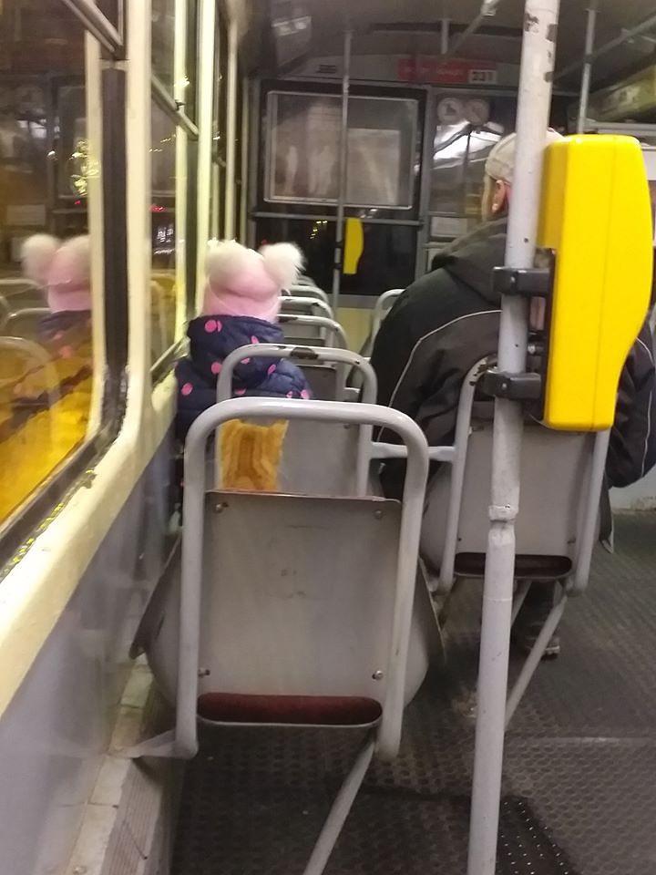 Runcis, kurš viens pats vizinājās tramvajā, ir atgriezies mājās