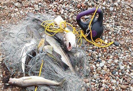 Jūras piekrastē maluzvejnieki ķer lašveidīgos