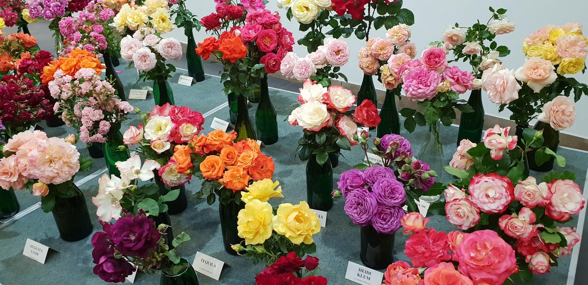 Pirmo reizi šovasar Biedrības namā norisināsies ziedu izstāde