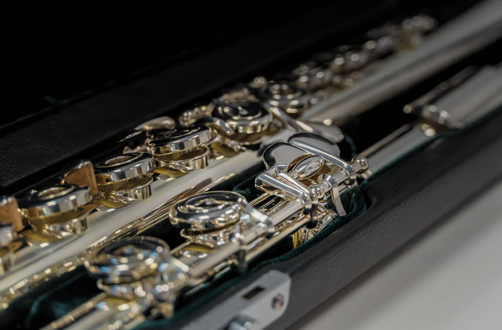 LMMDV projekta ietvaros iegādājas jaunus mūzikas instrumentus