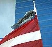 Atkārtoti karogam piesien gružu maisu