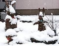 Papildināts – Pāvilosta slīgst sniega kupenās