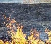 Ja pamanīs kūlas ugunsgrēka dūmus, meklēs pašus dedzinātājus