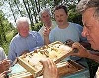 Laucienā, pie miermīlīgo bišu pavēlnieka