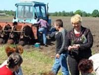 Bezdarbnieki audzēs kartupeļus