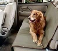 Lai izbrauciens ar auto būtu ērts arī dzīvniekam