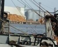 Zvejniekus un kuģu remontētājus gaida viens liktenis