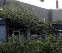 Stipra vēja nolauzts koks sabojā ēkas jumtu