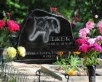 Pēc gada varētu atklāt legālu dzīvnieku kapsētu