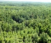 Rīko semināru mežu īpašniekiem