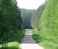 """""""Valsts mežiem"""" pārmet nelikumīgus būvdarbus"""