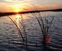 Papes ezerā ievieš jaunu makšķerēšanas kārtību