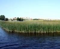 Atvieglo nosacījumus Liepājas ezera apsaimniekotājiem