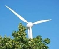Pašvaldībā vēja parku lietā nekas nemainīsies