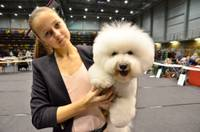 FOTO: Nacionālā šķirnes suņu izstāde Liepājā