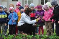 Vasarā uzziedēs bērnu stādītās puķes