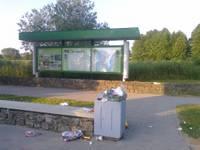 Vārnas no pārpildītām urnām izmētā atkritumus