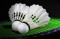 Ar izcīnītu zeltu jauno sezonu uzsāk Liepājas badmintonisti