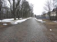Likvidēs Botkina, atjaunos – Zirgu ielu