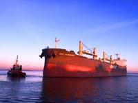 No Liepājas ostas eksportēs augstvērtīgu koksnes šķeldu
