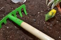 Skolēni iejutīsies dārznieka lomā