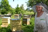 Trīsdesmit gadu draugos ar bitēm