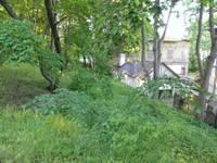Kaimiņi pārmet – parka daļa nekopta